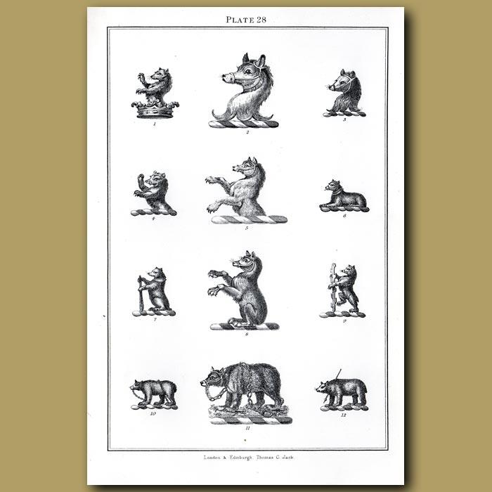 Bears: Genuine antique print for sale.