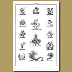 Roses, Acorn, Pineapple, Grapes, Horn of Plenty