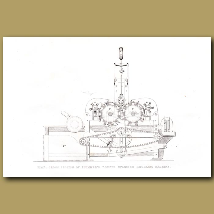 Antique print. Flax. Cross Section Of Plummer's Heckling Machine