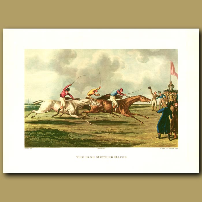 Antique print. Horse Racing. The High Mettled Racer By Henry Alken