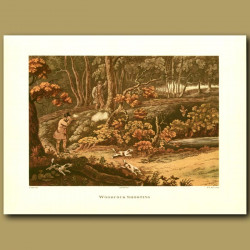 Woodcock Shooting By Henry Alken