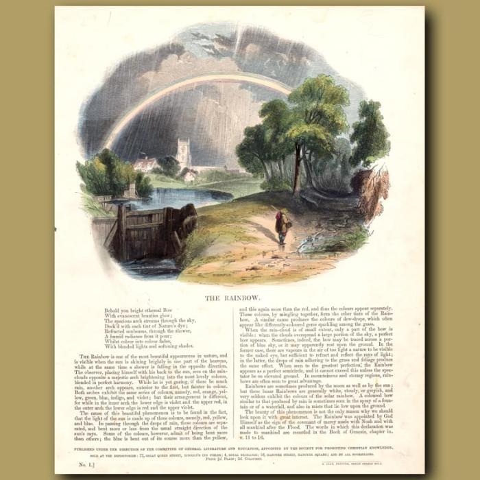 The Rainbow: Genuine antique print for sale.