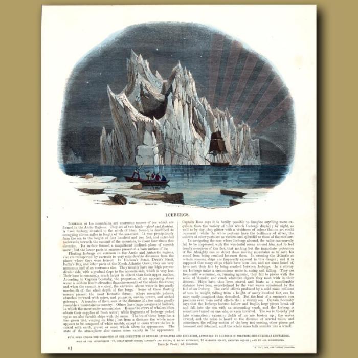Icebergs: Genuine antique print for sale.