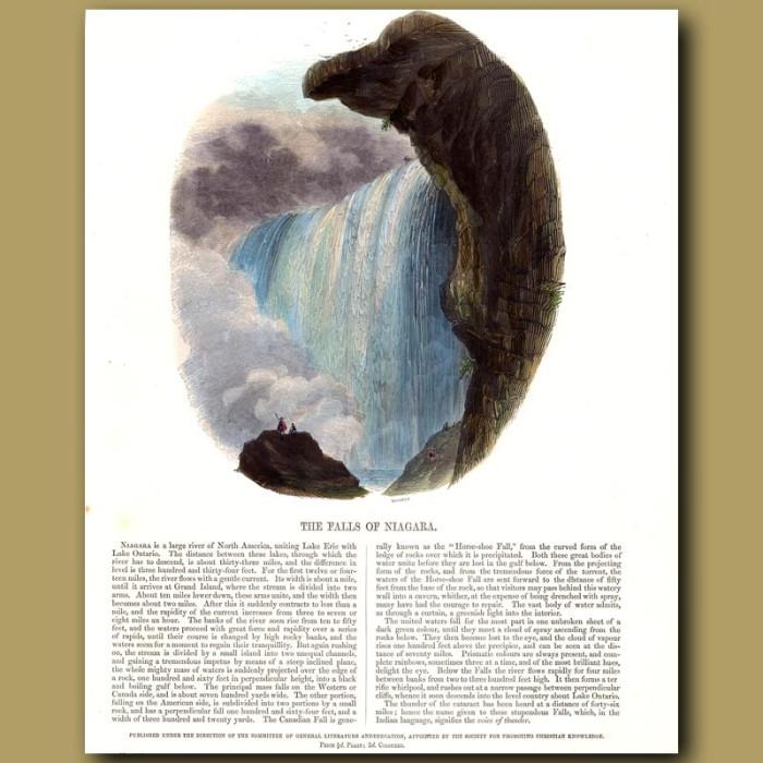 The Falls of Niagara: Genuine antique print for sale.