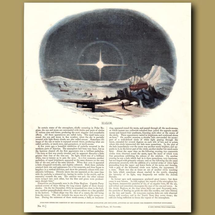 Halos: Genuine antique print for sale.