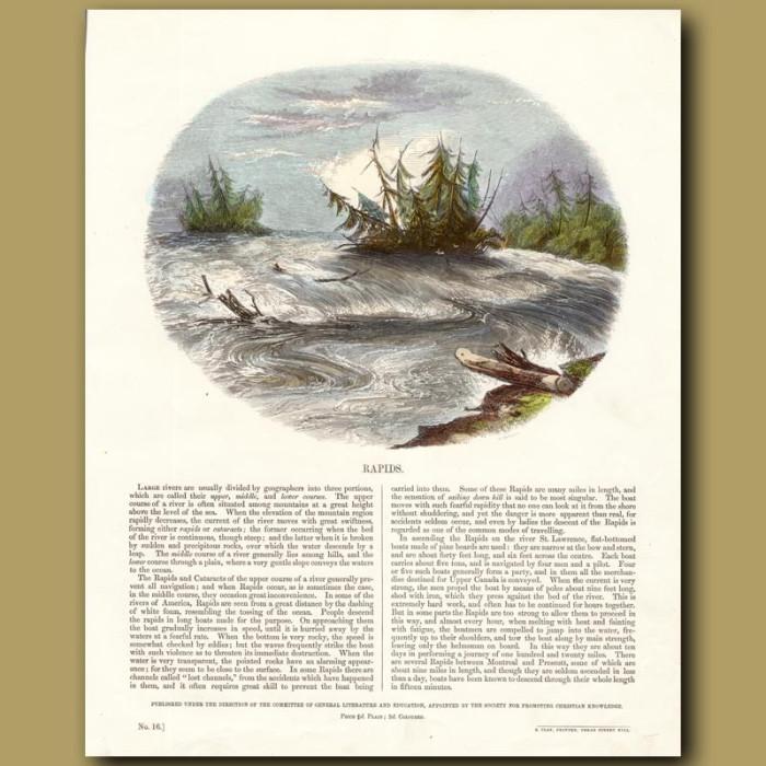 Rapids: Genuine antique print for sale.