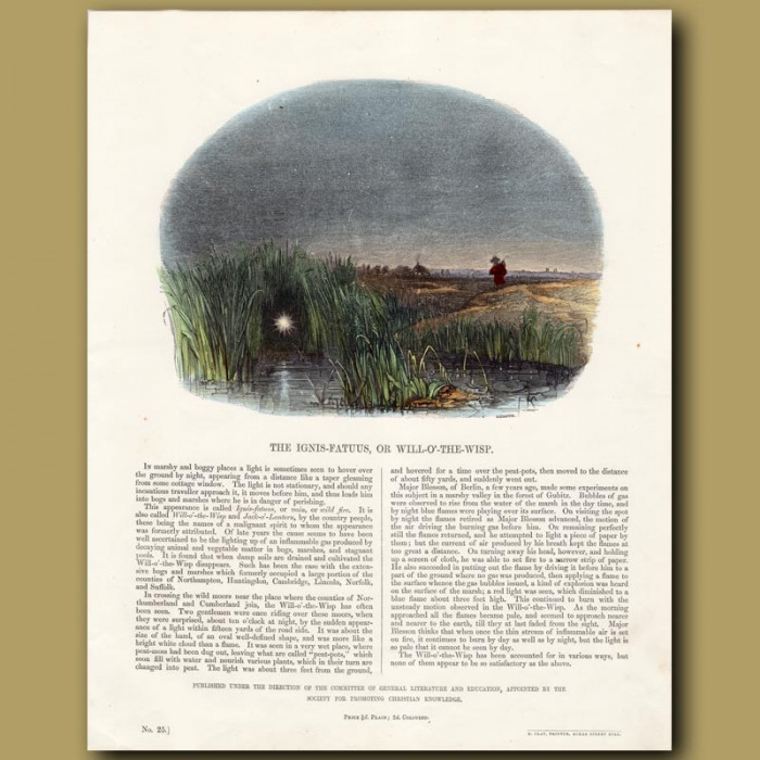 The Ignis Fatuus; or Will-o'-the-wisp: Genuine antique print for sale.