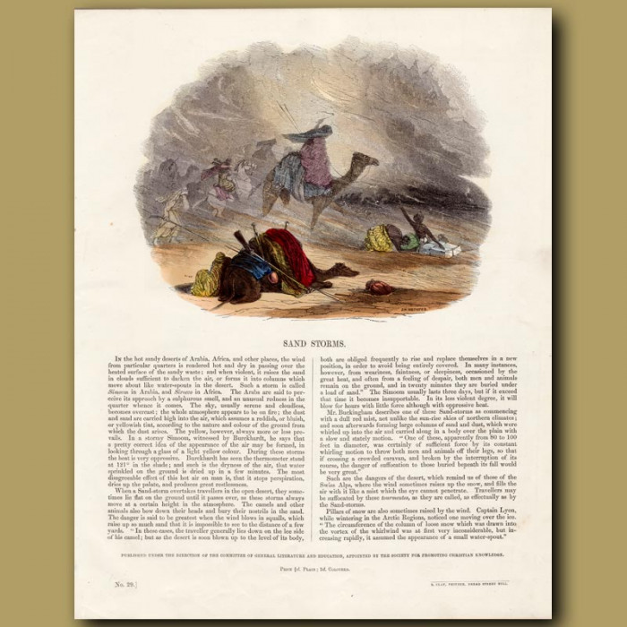 Sand Storms: Genuine antique print for sale.