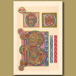 Twelfth Century No. 9. Ornamental Letters O, D And P
