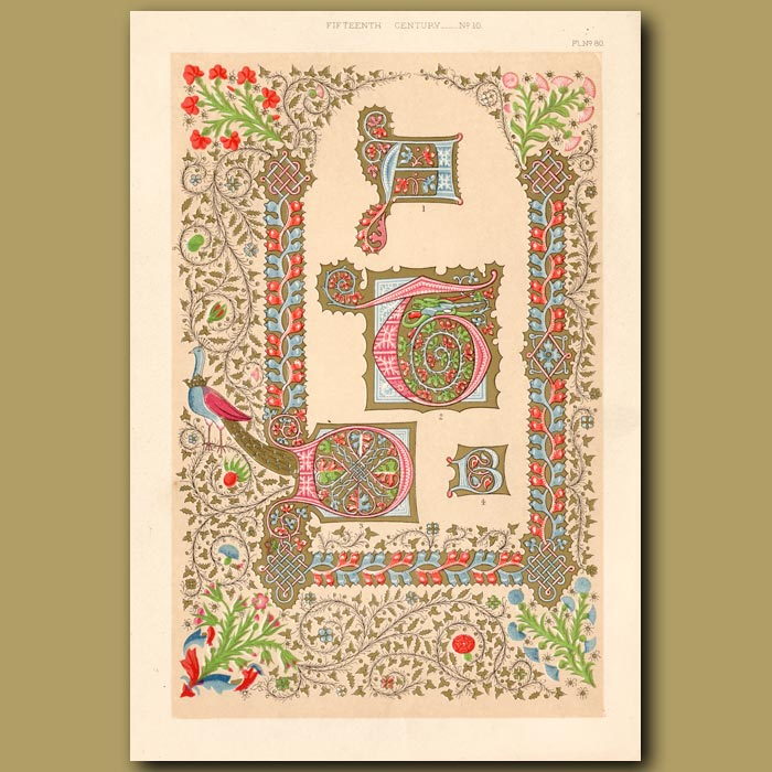 Antique print. Fifteenth Century No. 10. Various Initial Letters And Borders