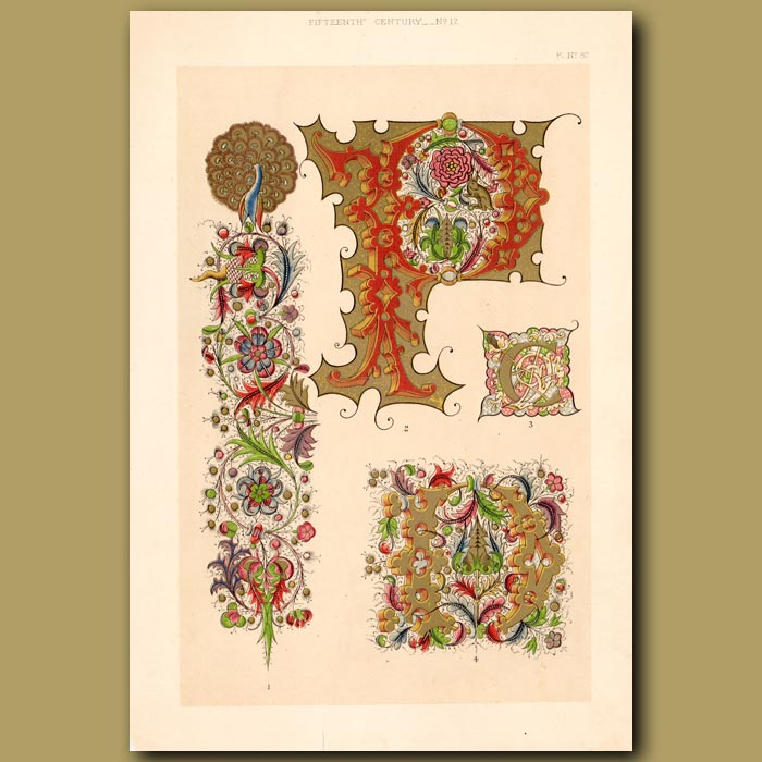 Antique print. Fifteenth Century No. 17. Spanish Decorative Borders And Initial Letters