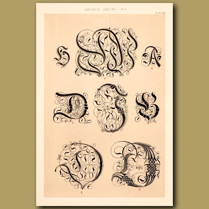 Antique print. Sixteenth Century No.8. Various Initial Letters (S,D,L,A Etc)