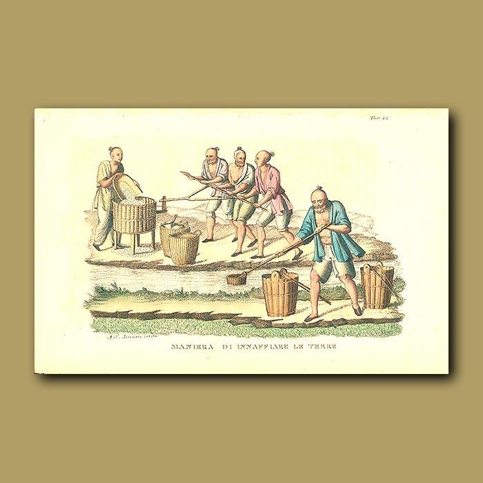 Antique print. Irrigation