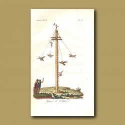 Mexican flying game with people and birds on a giant pole