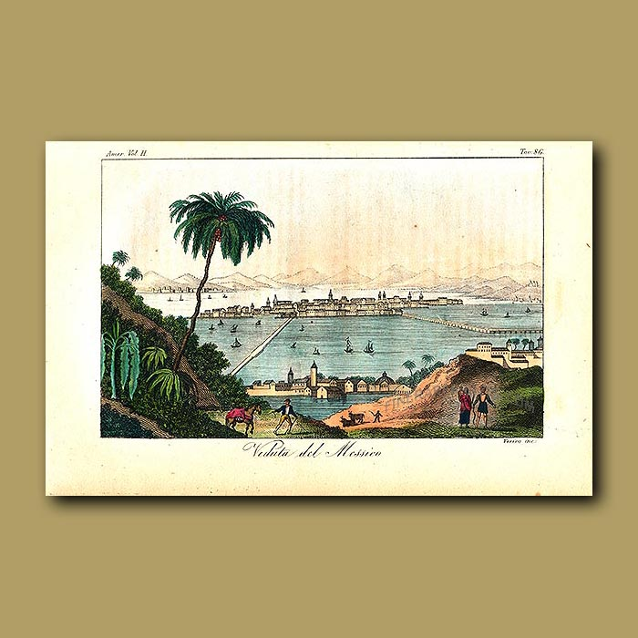 Antique print. View of Mexico