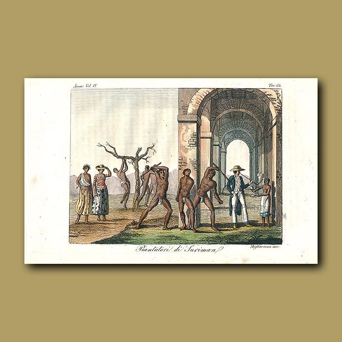 Antique print. Slaves in Surinam