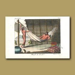 Hut and hammock of Caribbean people