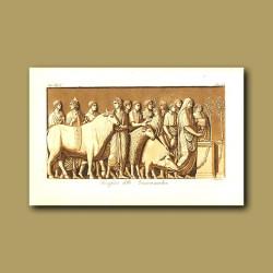 Sacred and traditional Roman sacrifice to the god Mars of a bull ram and pig