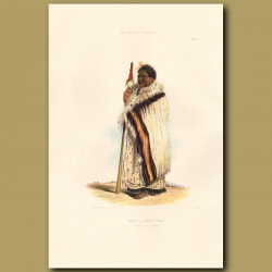 Chief Nene Or Tamiti Waka Of Hokianga