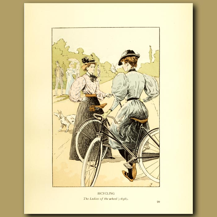 Antique print. Bicycling. The Ladies Of The Wheel