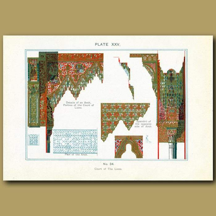 Antique print. Alhambra Palace: Court Of The Lions