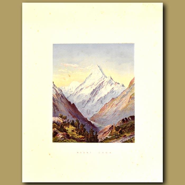 Antique print. Mount Cook