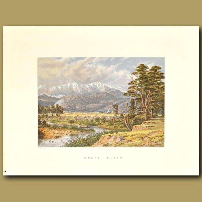 Antique print. Opaki Plain