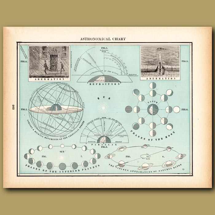 Antique print. Astronomical Chart: Phases of the Moon