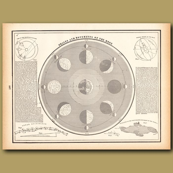 Antique print. Phases and Movements of the Moon