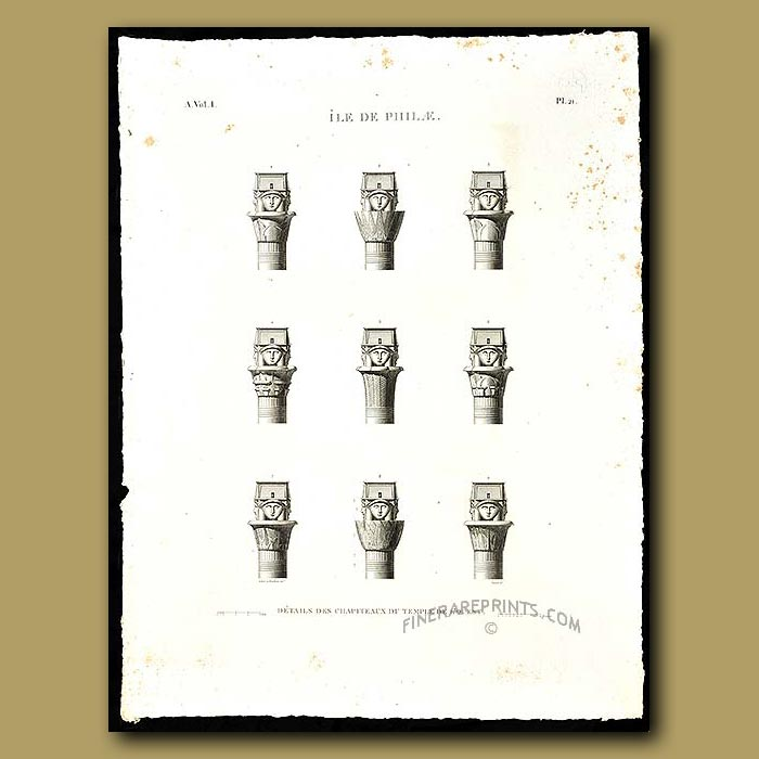 Antique print. Details of the columns of the West Temple