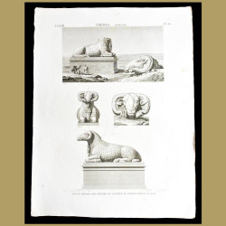 Rams of the Great Southern Temple