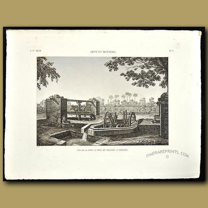 Antique print. Ox-driven water wheel for irrigation