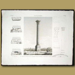 View profiles and details of great column commonly called Pompey's Pillar