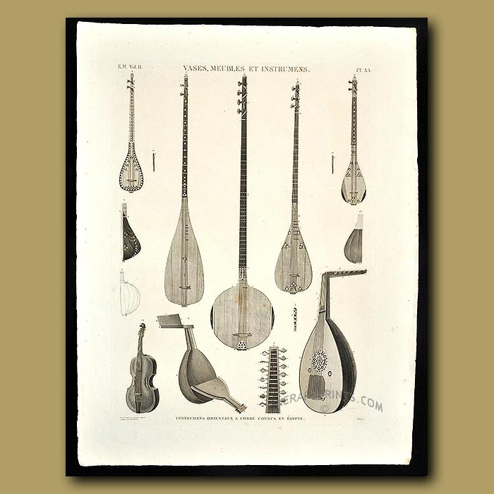 Antique print. Stringed musical instruments