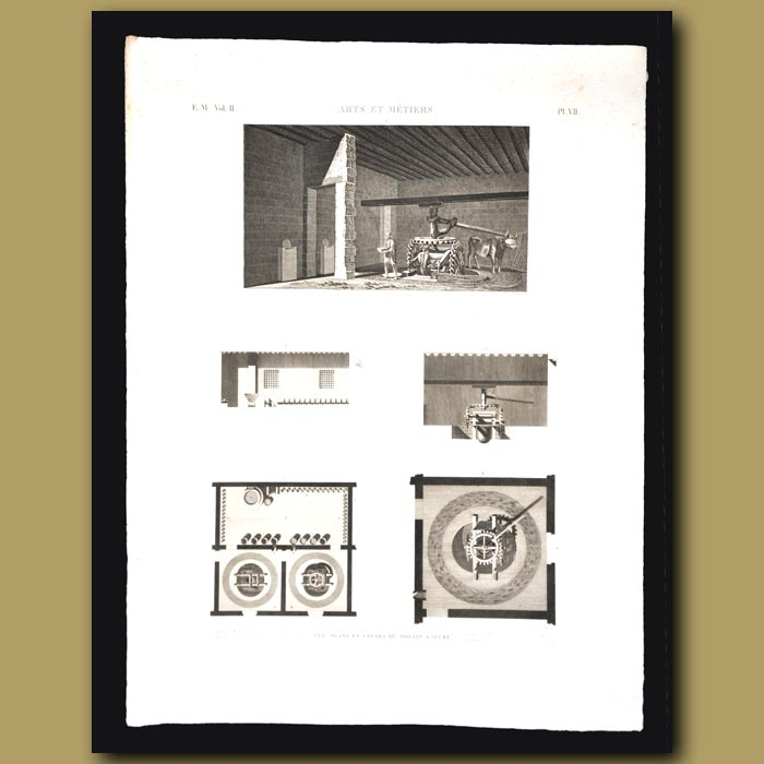 Antique print. View and Plans of A Sugar Mill
