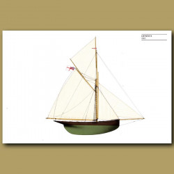 America's Cup yacht: Genesta 1885