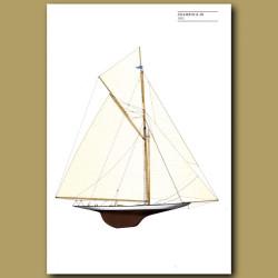 America's Cup yacht: Shamrock III 1903