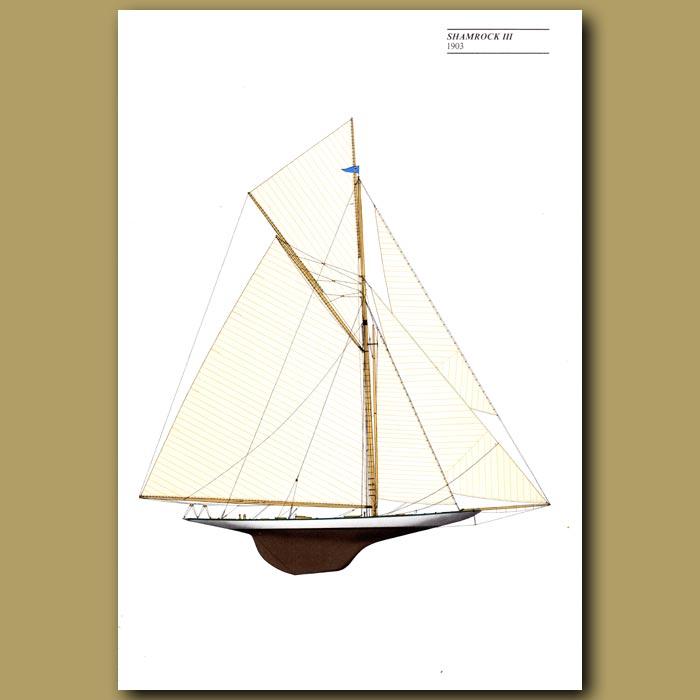 Antique print. America's Cup yacht: Shamrock III 1903