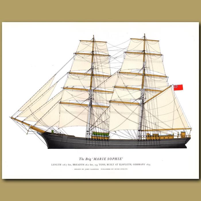 The Brig 'Marie Sophie': Genuine antique print for sale.