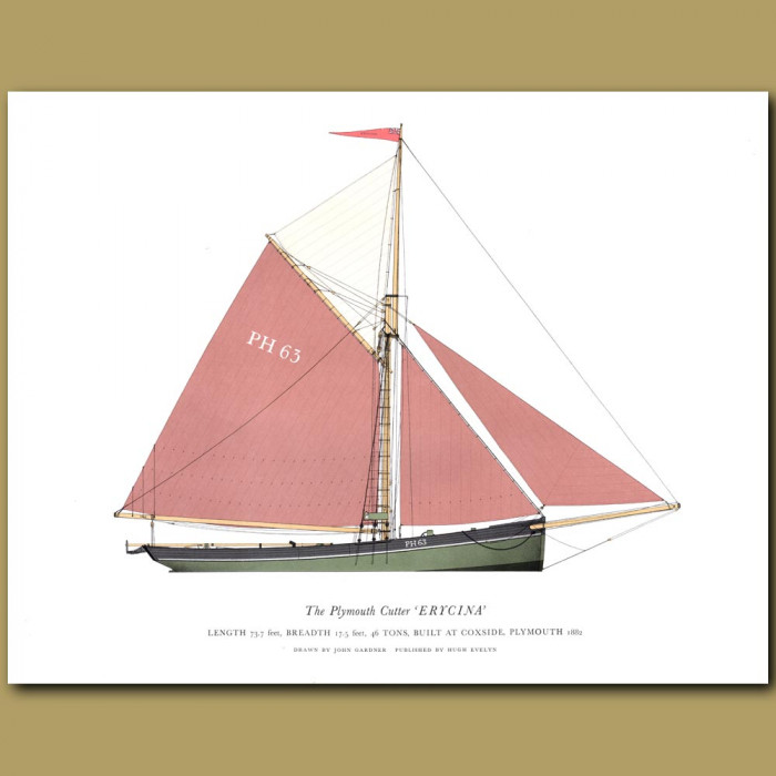 The Plymouth Cutter 'Erycina': Genuine antique print for sale.