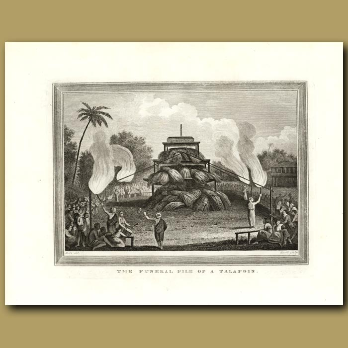 Antique print. The Funeral Pile Of A Talapoin