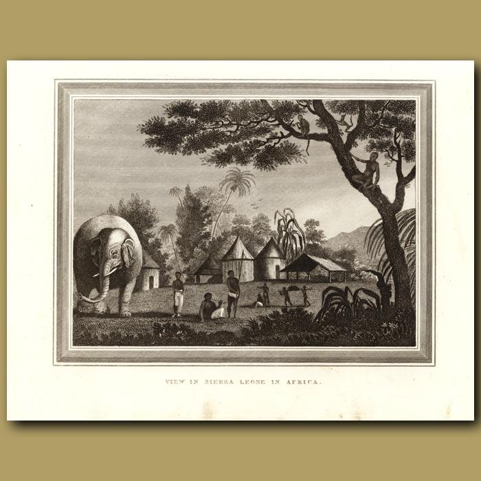 Antique print. View In Sierra Leone In Africa