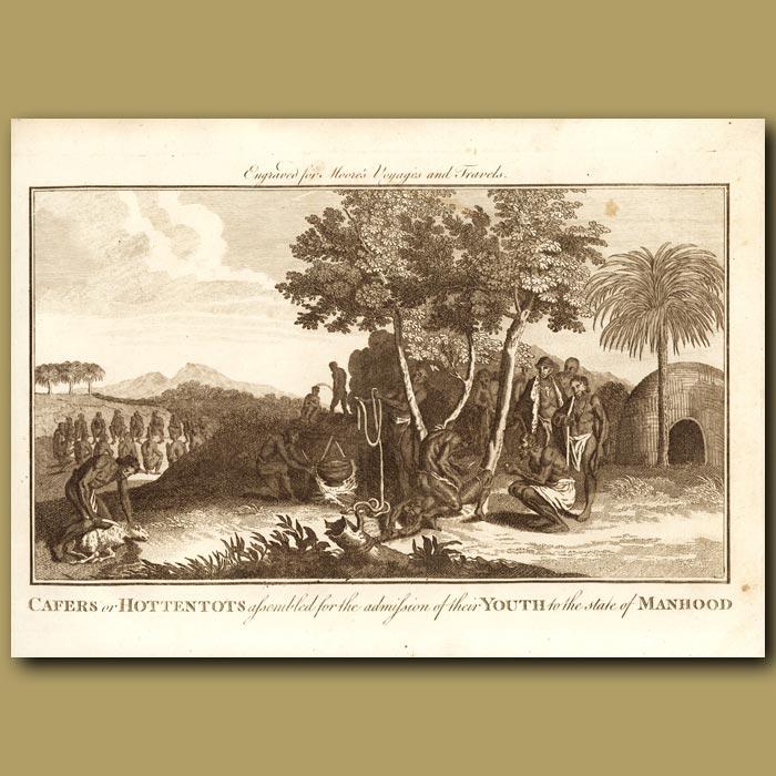 Antique print. Hottentots