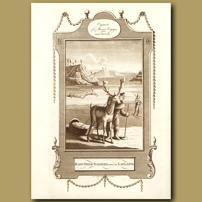Antique print. Reindeer Sledges Used In Lapland