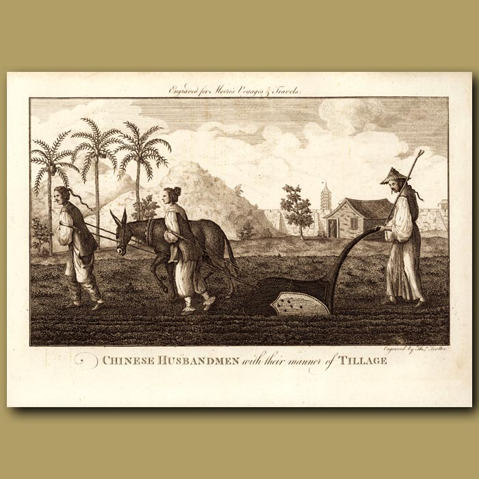 Antique print. Chinese Farmers
