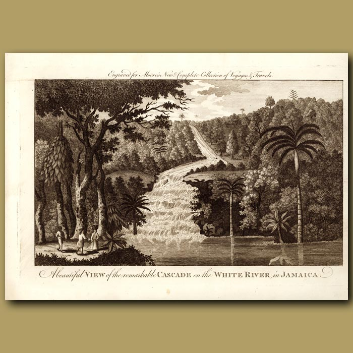 Antique print. Cascade Of The White River In Jamaica