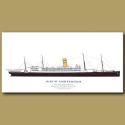 Nieuw Amsterdam: Ocean Liner Passenger Ship From 1905