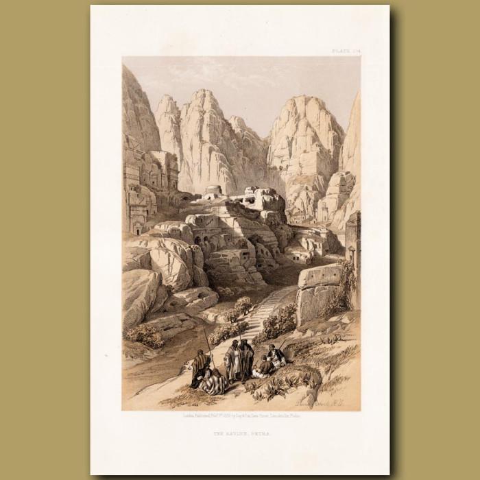 The Ravine, Petra