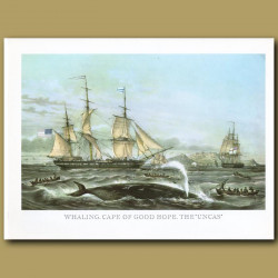 Whaling Ships Cape Town