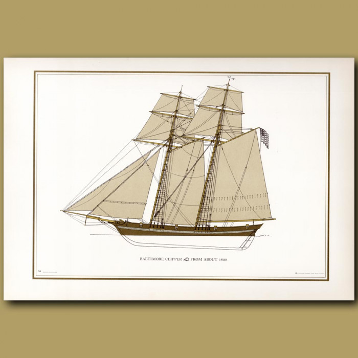 Baltimore Clipper from about 1820: Genuine antique print for sale.